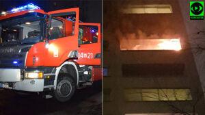 Pożary balkonów i samochodów. Strażacy mieli pracowitą noc