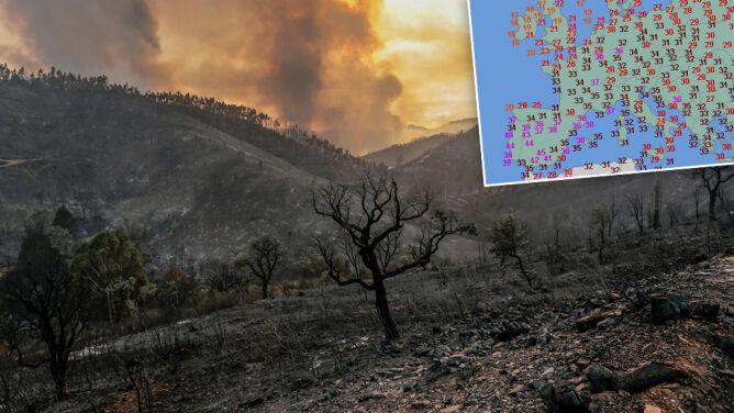 Skwar, pożary i susza. Trzy ofiary śmiertelne fali upałów w Europie